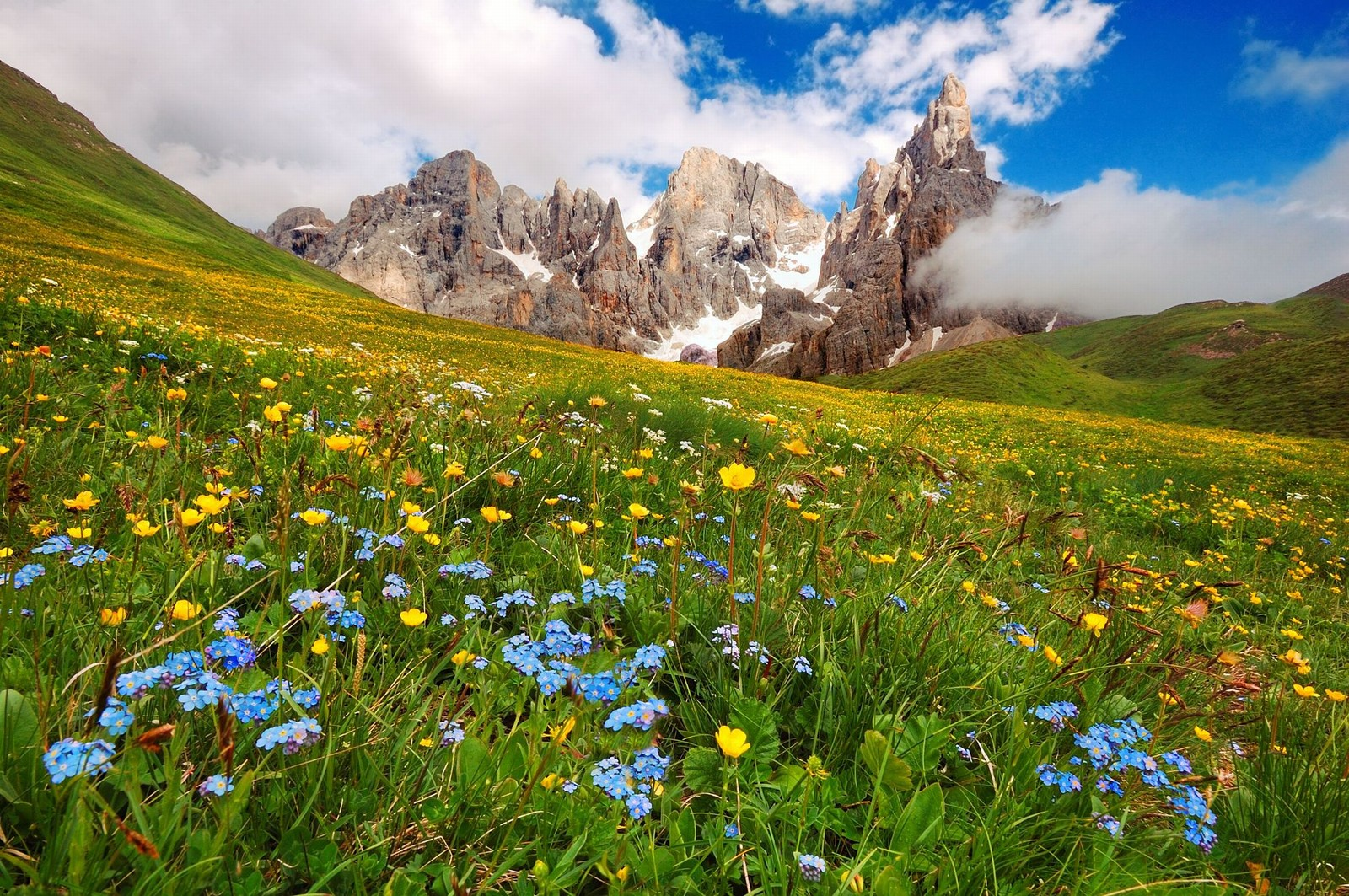 PALE DI SAN MARTINO: DOLOMITIC LOVE